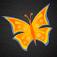 Imagem do aplicativo Brooches