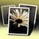 Imagem do aplicativo Pic Jointer Colagem de Fotos