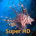 Imagem do aplicativo Peixes Tropicais Super HD (para o novo iPad) – Papéis de parede para iPad